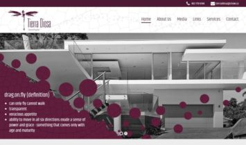 Our Latest Web Design: Tierra Diosa Consulting Inc.