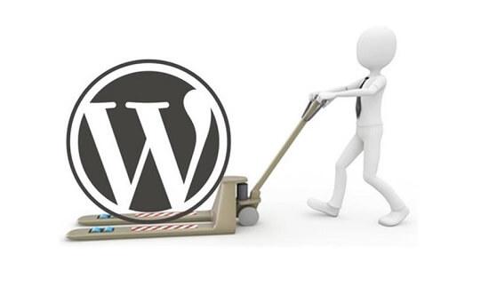 WordPress Website Transfers